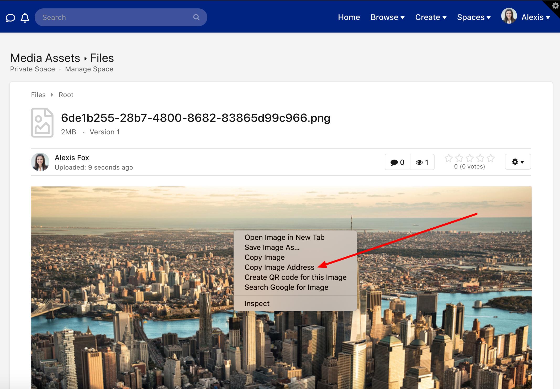 Click Copy Image Address