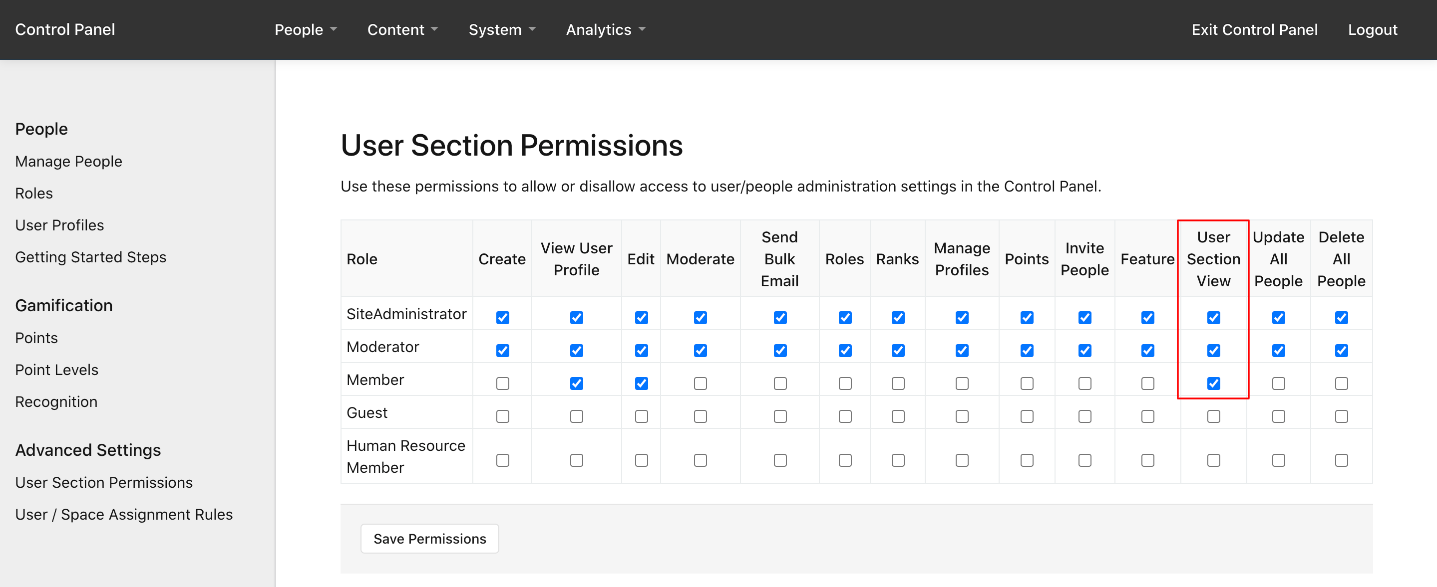 The User Section View permission
