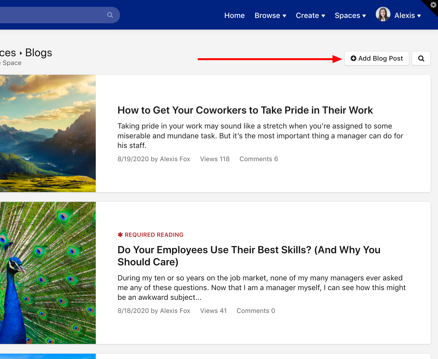 Click Add Blog Post